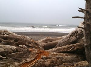 beach rialto