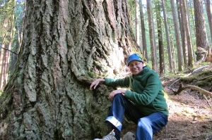 Shann with big tree Hoh