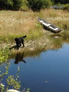 jack pond
